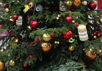 Жители Подмосковья потратили на празднование Нового года 1500 рублей